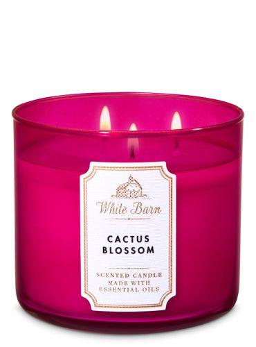 Vela-Grande---Cactus-Blossom---Bath---Body-Works