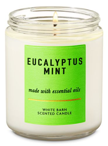 Vela-Mediana---Eucalyptus-Mint---Bath---Body-Works